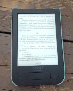 Ebook sur liseuse